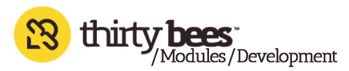 Thirty bees modules development Course